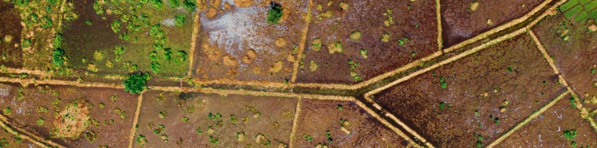 aerial-photography-of-land-field-3030307